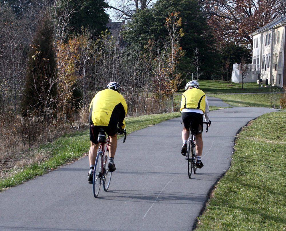 cyclists-1435110.jpg